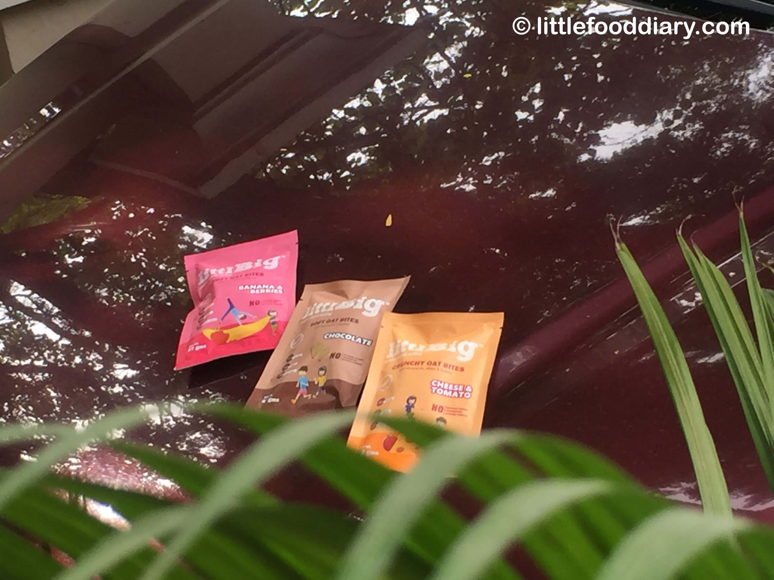 LittlBig Oat Bites – Little Snacks with Big Dreams