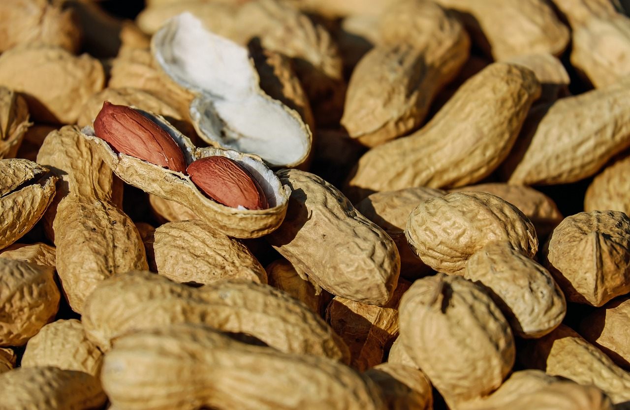 Food Allergies in Children | Peanut Allergy